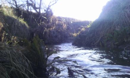 RunLong160403_scenery2.jpg