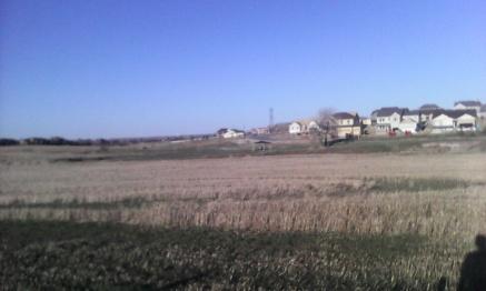 RunLong160403_scenery3.jpg